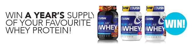 USN protein recipe